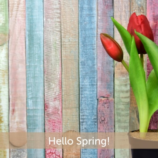 Give Your Home a Colourful Spring Makeover